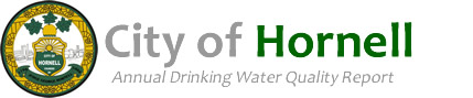 City of Hornell Annual Drinking Water Quality Report